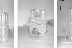 atelier-Lipsky-56-2